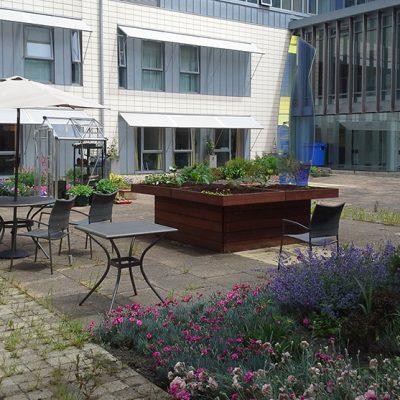 PEH-site-garden